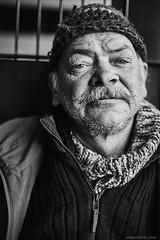 (Sven Evertz) Tags: mann guy obdachlos homeless streetfotografie streetphotography bart beard köln portrait gulliverüberlebensstationköln canon5dmarkii canonef5014usm