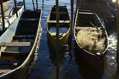 Luzes do fim do dia (Márcia Valle) Tags: boats barcos caravelas bahia amoaabahia brasil brazil márciavalle verão summertime sun sol mar sea seascape nikon d5100 sunset pordosol