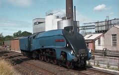 DO YOU REMEMBER WHEN..... (Malvern Firebrand) Tags: 4498 sir nigel gresley dairy appleby 26881 loco carrying cumbrian mountain express headboard carlisle hellifield cme 1981 westmorland cumbria lightengine watering mainline steam summer 462 a4 lner streamlined 60007 railtour nameplate track vehicle transport