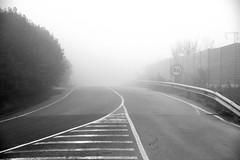 60 (jaume zamorano) Tags: blackandwhite blancoynegro blackwhite blackandwhitephotography blackandwhitephoto boira bw brouillard d5500 fog foggy ground lleida monochrome monocromo mist nikon noiretblanc nikonistas niebla pov road