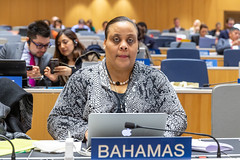 Intergovernmental Committee on Intellectual Property and Genetic Resources, Traditional Knowledge and Folklore (WIPO | OMPI) Tags: bahamas delegate igc ompi wipo