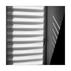 Try to make the Best of it ... (Thomas Listl) Tags: thomaslistl blackandwhite biancoenegro noiretblanc monochrome square 50mm light shadow lightandshadow lines stripes geometry graphical jalousie sunlight wall blinds louvre shade