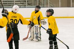 DSC_4319.jpg (Flickr 4 Paul) Tags: chillerdublin hornets pondhockey