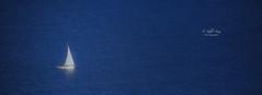 (084/19) Minimalismo (Pablo Arias) Tags: pabloarias photoshop ps capturendx españa photomatix velero mar agua mediterráneo minimalismo bahía benidorm alicante