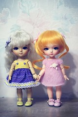 IMG_9952 (Marinevirgo) Tags: bjd lati yellow line latidoll lami haru elly kimmy miel coco sbelle sissi tiny tan normal violet white doll