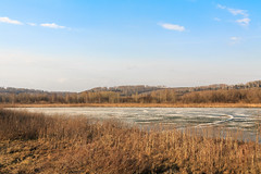 Sunny spring day near the frozen lake (man_from_siberia) Tags: landscape lake frozen ice grass siberia russia canon eos 5d dslr canoneos5d canon5d canon5dclassic fullframe canonef40mmf28stm pancakelens spring earlyspring april пейзаж весна апрель outdoors outdoor озеро озеросуховское лед трава сибирь россия sunnyday sunny солнечнаяпогода