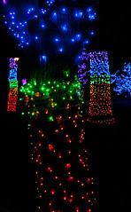 Coloured Trees! (J.R. Rondeau) Tags: rondeau windsor ontario xmas christmas christmaslights christmasdecorations colours colors lights bright brightlights canoneos tamron2875 photoshopelements10