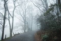 DSCF9057FullRes (djandzoya) Tags: boone boonenc hiking vacation fall fallcolors