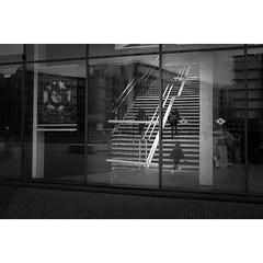 - Staircase playground -⠀ ⠀ #children #staircase #playground #montreuil #montreuilcity #citylife #instagoodmyphoto #monochrome #monochromatic #bw #bwphoto #bwphotography #bwonly⠀⠀⠀ #blackandwhite #blackandwhitephoto #blackandwhitephotography #blackandwhit (quentinguignard) Tags: staircase playground ⠀ children montreuil montreuilcity citylife instagoodmyphoto monochrome monochromatic bw bwphoto bwphotography bwonly⠀⠀⠀ blackandwhite blackandwhitephoto blackandwhitephotography blackandwhiteonly blacknwhite blacknwhitephoto blacknwhitephotography blacknwhiteonly 2instagoodportraitlove justgoshoot peoplescreatives exploretocreate theoutbound worldtravelbook monoart streetislife candid