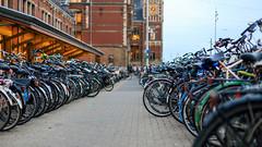 Biking lot (mic00l) Tags: 50mm amsterdam centraalstation f14 jour canon eos 6d street shot night été hollandeseptentrionale paysbas nl