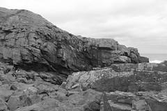 Cliffs,Collieston_Mar 19_527 (Alan Longmuir.) Tags: monochrome grampian aberdeenshire collieston cliffs
