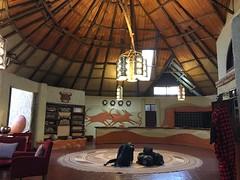 IMG_1656 (suuzin) Tags: masai mara safari
