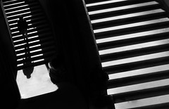 broad perspective (/ urban.fishing /) Tags: dresden zwinger stairs shadow high contrast humaningeometry silhouette urban fuji xt1 black white stripes diagonale