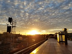Pretty sky over Rockville this morning. (John Brighenti) Tags: metro dcmetro rockville maryland md twinbrook publictransportation outdoors suburbs urban city sunrise clouds sky blue yellow brilliant sunburst samsung galaxy s8plus s8 cellphonephotography commute morning