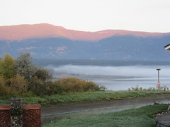 Time for breakfast (jamica1) Tags: salmon arm shuswap bc british columbia canada