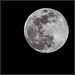 Spring Equinox Super Moon