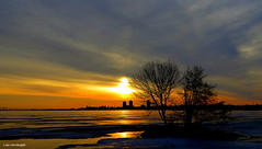 Sunrise over Hamilton Harbour (Lois McNaught) Tags: sunrise hamiltonharbour nature scene landscape hamilton ontario canada trees water reflection