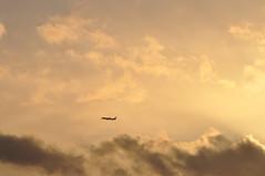 BA0035 LHR-MAA (A380spotter) Tags: takeoff departure climb climbout sunset dusk sundown h2o cumulonimbus raincloud nimbus cloud sky boeing 787 9 900 dreamliner™ dreamliner zb363 gzbkb internationalconsolidatedairlinesgroupsa iag britishairways baw ba ba0035 lhrmaa runway27l 27l london heathrow egll lhr