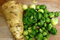Home grown veg for Christmas dinner (karenblakeman) Tags: cavershamgarden caversham uk parsnip brusselssprouts vegetables food 2018 december reading berkshire