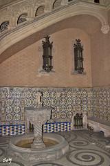Palau del Baró de Quadras. (svet.llum) Tags: barcelona catalunya cataluña interior arquitectura detalles palau arte palacio edificio edifici