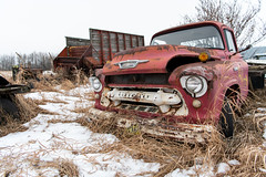 Fogotten (Shane Sadoway) Tags: rusty rust red abandoned neglected old truck vehicle farm field metal chevy chevrolet flatbed