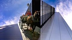 Giro in carrozza - Paseo en coche - Horse carriage ride (COLINA PACO) Tags: giro paseo caballo horse cavallo cheval córdoba spain spagna espagne españa photoshop photomanipulation fotomanipulación fotomontaje franciscocolina