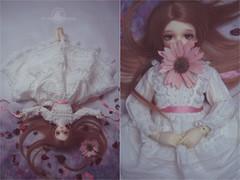 .frostbitten. (.daria. [the haunted dollhouse]) Tags: bjd abjd balljointeddoll volks volksbjd f22 kun