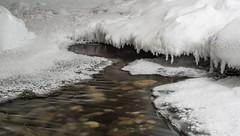 Johnston Canyon (Guldenfels-photos) Tags: johnston canyon icefield columbia canada pvt 2019 ice glacier eau neige snow blue white forest iamnikon