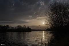 Sunset in gray (mañega) Tags: sunset rio agua river atardecer salamanca riotormes nubes sol arboles serenidad calma nikkon invierno nature naturaleza