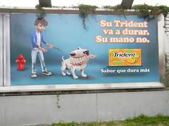 Peru 3 382 (burbadj) Tags: peru dog lima billboard trident saborqueduramas