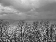 Storm over the horizon (mswan777) Tags: white black ansel monochrome michigan stjoseph mobile iphone iphoneography apple water ice horizon cloud scenic silhouette tree cold winter lakeeffect storm snow seascape shore coast bluff