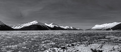 2019-02-24-Pano-BW (tpeters2600) Tags: alaska cookinlet turnagainarm canon eos7d tamronaf18270mmf3563diiivcldasphericalif hdr pano panorama landscape scenery outdoors photomatix blackandwhite monochrome