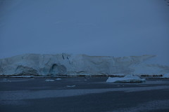 IMG_6894 (y.awanohara) Tags: cuvervilleisland cuverville antarctica antarcticpeninsula icebergs glaciers blue january2019