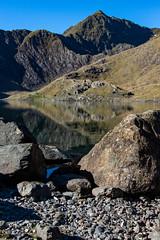 Llyn Llydaw (Elliot Hyndman) Tags: mountain snowdon wales northwales mount snowdonia lake reservoir reflections sheep bike nature landscape nikon nikond7200 sigma art 24105 sigma24105