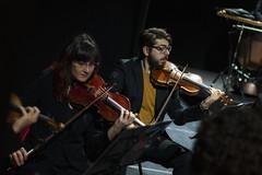 Violín segundo (Guillermo Relaño) Tags: maxbruch camerata musicalis teatro nuevoapolo madrid guillermorelaño nikon d90 concierto número1 n1 violín violin especial ¿porquéesespecial orquesta orchestra cuerda