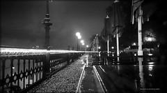 Mosebacke. (Papa Razzi1) Tags: mosebacke sweden stockholm autumn october 2017 bw wet rainy early