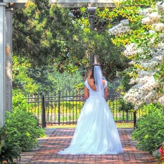The Bride's Photo Shoot