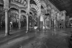Mezquita B&W (José M. Arboleda) Tags: monocromático blancoynegro arquitectura edificio casa iglesia catedral mezquita mozárabe arco columna españa córdoba andalucía canon eos 5d markiv ef1635mmf4lisusm josémarboledac