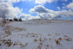 at Utsukushi Highland in Nagano prefecture (yasushiinanaga) Tags: utsukushihighland naganoprefecture japan landscape snow sky cloud lightandshadow canoneos6d ef2470mmf4lisusm 24mm