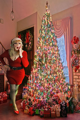 Oh my god, how am I going to climb to the top of that tree? (lisahsixty) Tags: lisahfrench boyswillbegirls cindy santahat tgirlatchristmas christmastgirl reddress fishnets redheels tightredress cleavage rednails glittermakeup redlips femininetgirl cd lisahfrenchatchristmas femtgirl crossdresser blondtgirl transvestite tg feminize