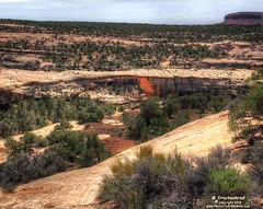A view of Owachomo Bridge from the Owachomo Bridge Viewpoint, Natural Bridges National Monument (PhotosToArtByMike) Tags: owachomobridge naturalbridgesnationalmonument owachomo utah ut limestone naturalbridges erosion canyon scenic desert blandingutah nativeamericans goldensandstone rockspires landscape rockformations desertlandscape