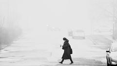 early working morning (Darek Drapala) Tags: morning early fogg city civilization street bw blackwhite blackandwhite mood warsaw warszawa panasonic poland polska panasonicg5 lumix light