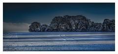 The Way To The Woods In Winter, Eynsford, Kent. (Richard Murrin Art) Tags: thewaytothewoodsinwinter eynsford kent snow woods sky trees richard murrin art