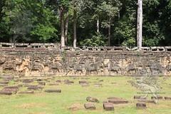 Angkor_terrazza degli elefanti_2014_11
