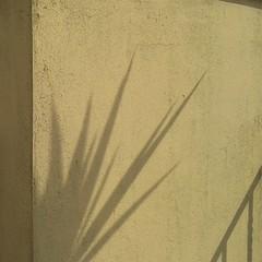Qui è tusgiù 'n l'avensciuura (plochingen) Tags: seville sevilla spagna spain espagne españa abstarit abstract astratto minimal less urban derive
