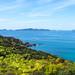 New Zealand - Saint Paul's Rock & Mahinepua Bay