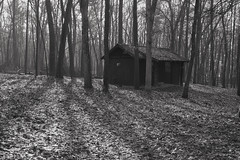 022587B&W  Wanta Get Away? (David G. Hoffman) Tags: blackandwhite cabin woods fog shadows