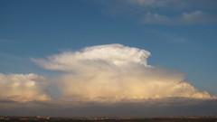 Giant cloud (Tanya Mass) Tags: giantcloud cloud weather april2019 sunset glovingcloud panorama cityskyline sky storm stormycloud гигантскоеоблако погода anvilcloud