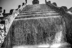 Chute d'eau à Pairy daiza (BenoitGEETS-Photography) Tags: chutedeau waterfall nikon tamron d610 2470 hdr blackwhite bn bw noiretblanc nb pairidaiza photomatix photomatixpro