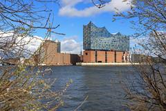 Elbphilharmonie Hamburg (Mathias Düber) Tags: hamburg hafencity elbphilharmonie elphi meine perle sunshine canon elbe